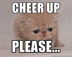 Kitty Meme Generator - cheer up please super sad cat meme generator warm and fuzzy