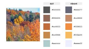 fall color pallette and winter color palette inspiration