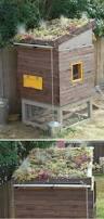 Backyard Chicken Houses by 25 Best Chicken Coop Designs Ideas On Pinterest Chicken Coops