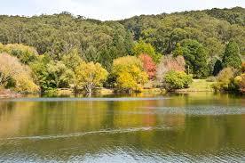 Mt Lofty Botanic Gardens Mount Lofty Botanical Gardens South Australia Stock Photo Image