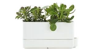 self watering indoor planters self watering herb garden indoor herb garden self watering planter