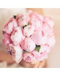 where to buy peonies bouquet of 25 peonies buy price 60000tg delivery and order