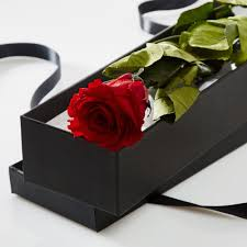 boxed roses single in a silk lined gift box petals roses