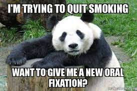 Pick Up Line Panda Meme - i m trying to quit smoking want to give me a new oral fixation