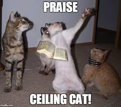 Ceiling Cat Meme - praise ceiling cat imgflip