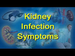 what are the signs and symptoms of a kidney infection youtube