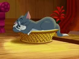 52 tom jerry images tom jerry toms