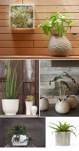 indoor modern planters 284 best planters dish container trough and terrarium images