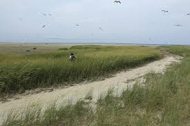 as sands shift cape cod refuge changes and tensions rise the