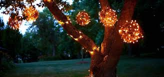 How To String Lights On Outdoor Tree Branches by Diy Grapevine Lighting Balls What A Bright Idea