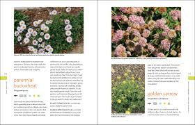 25 native plants for the the drought defying california garden 230 native plants for a