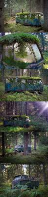 vw schwimmwagen found in forest 6950 best v dubb s images on pinterest vw beetles vintage cars