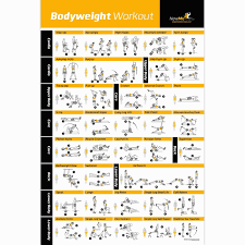 home work out plans home workout plans lovely bodyweight exercise poster total body