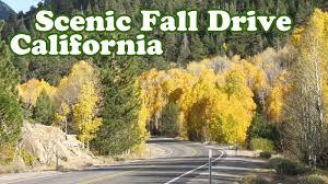 fall scenery drive autumn colors foliage leaf leaves road