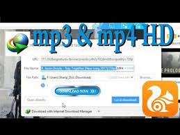 download youtube idm mp4 download how to download any videos using idm mp4 mp3 mpeg 3gp 4k 2k
