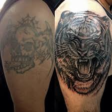 tiger cover up by aireelle on deviantart