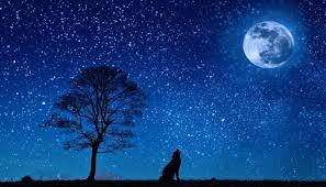 january s wolf moon on the rise tonight