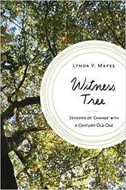 witness tree seasons of change with a century oak lynda v