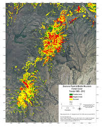 Russian Boreal Forest Disturbance Maps by Landsat Tim Assal