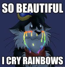 So Beautiful Meme - so beautiful i cry rainbows i cry rainbows quickmeme