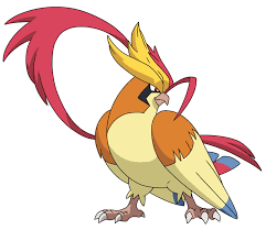 cartoon cockatiel 018 mega pidgeot by tzblacktd on deviantart