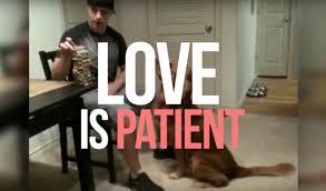 Kind Meme - love is patient love is kind meme edition youtube