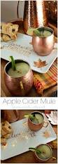 Halloween Cocktail Party Ideas by Best 25 Moscow Mule Recipe Ideas Only On Pinterest Mule Recipe