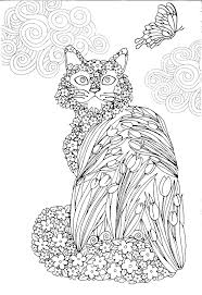 wildlife coloring book 163 best coloriage chat images on pinterest coloring books