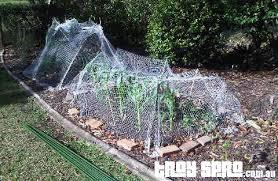 28 veggie garden netting enclosed vegetable garden plans