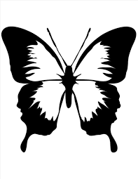 cool butterfly designs to draw homedesignlatest site
