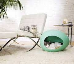 pet room ideas unique modern furniture for your pets room my decorative