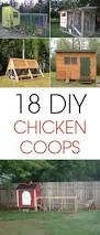 backyard chickens pallet coop home outdoor decoration