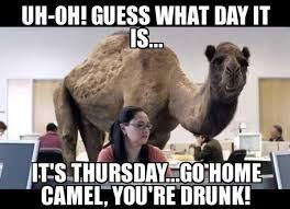 Hilarious Meme Pics - happy hump day meme images and pics