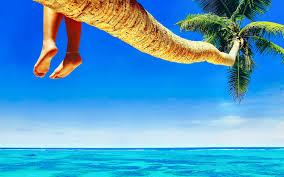 hp screensavers tropical wallpaper qygjxz