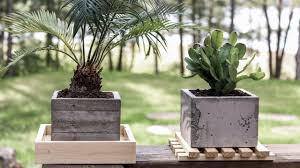 Concrete Planters Diy Concrete Planters Board Formed Concrete Youtube
