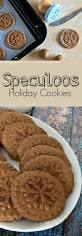 speculoos dutch windmill cookies