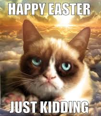 Grumpy Cat Meme Happy - grumpy cat easter meme quickmeme