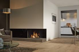 gas fireplace contemporary closed hearth 2 sided dru