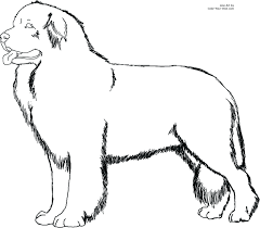 dogs coloring pages to print printable princess puppy little pet