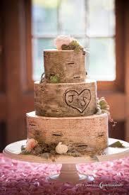 best 25 tree themed wedding cakes ideas on pinterest enchanted