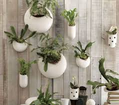 small indoor garden ideas modern indoor gardens my decorative