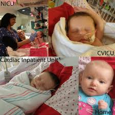 Cvicu by Project Linus Community Service Non Profit 2405 General