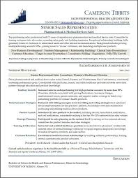 Job Summary Examples For Resumes by Sales Representative Resume Objective Example 6 Free Resume