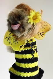 crochet pattern for dog coat dog sweater pattern