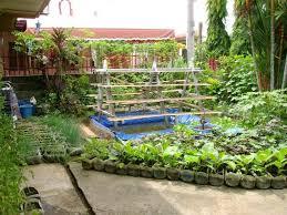 Backyard Vegetable Garden Ideas Backyard Backyard Vegetable Garden Ideas Diy Backyard Landscape