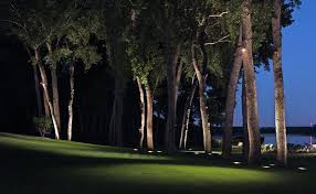Outdoor Up Lighting For Trees You Can Use Outdoor Lighting To Highlight Your Landscape