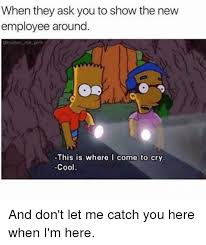 The New Meme - 25 best memes about new employee new employee memes