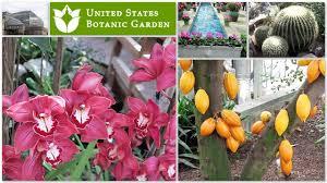 united states botanic garden washington dc tour of beautiful