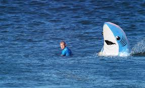 Shark Attack Meme - left shark mick fanning shark attack know your meme