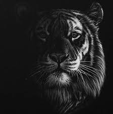 262 best pencil artists images on pinterest drawings draw and